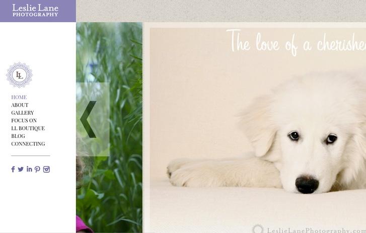 Leslie Lane Photography screen shot - white dog